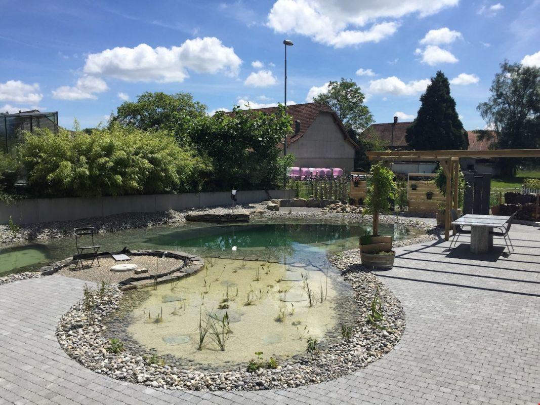 Gartenoase mit Naturschwimmteich