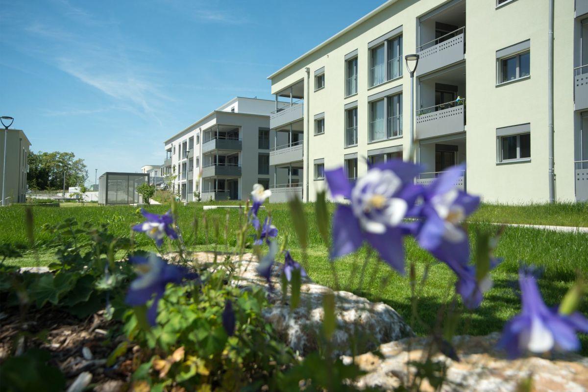 Wohnpark Sunneblick Beringen
