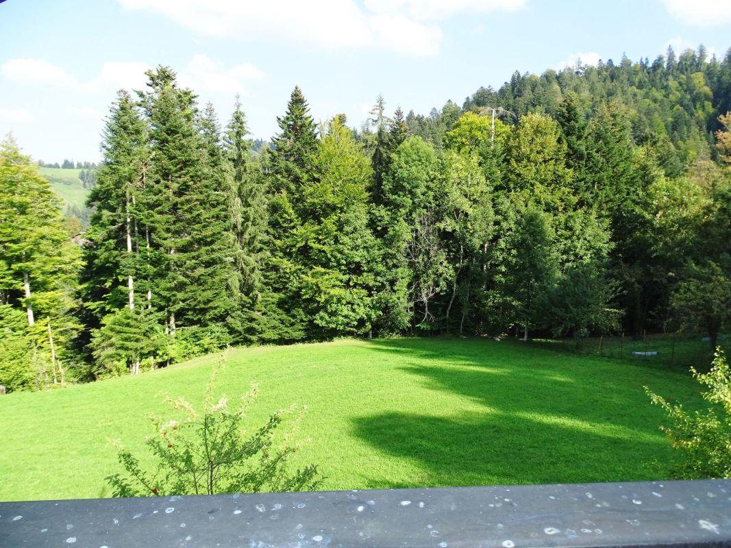 Ruhe und Natur - 3.5- bis 4.5-Zimmer-Bauernstöckli